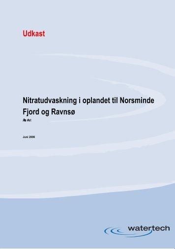 Nitratudvaskning i oplandet til Norsminde Fjord og Ravn ... - agwaplan