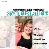sE bygger Historisk sejr Plastic - science - Sydvestjyllands Efterskole