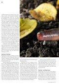 Regenwürmer: Schwerarbeiter für fruchtbare Böden - Pro Natura - Seite 6