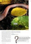 Regenwürmer: Schwerarbeiter für fruchtbare Böden - Pro Natura - Seite 7