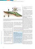 Sekvensstratigrafi - Geus - Page 4