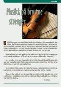 Nr. 1 2008 - Fredrikstad Frikirke - Page 3