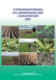 42355 beretning 2007.indd - NBR Nordic Beet Research