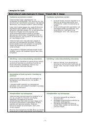 Læseplan for fysik - 1 - Beskrivelse af undervisningen i 6. klasse ...