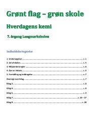 Grønt flag – grøn skole - Projekt Samspil