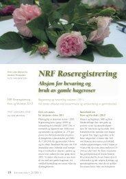 NRF Roseregistrering - Skog og landskap