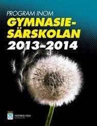 Program inom gymnasiesärskolan 2013-2014 - Västerås stad