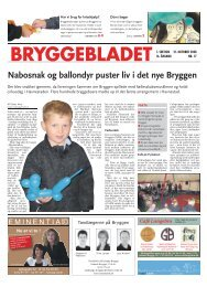 Nr. 17-2008 (21.10.2008) - 1. sektion Størrelse - Bryggebladet