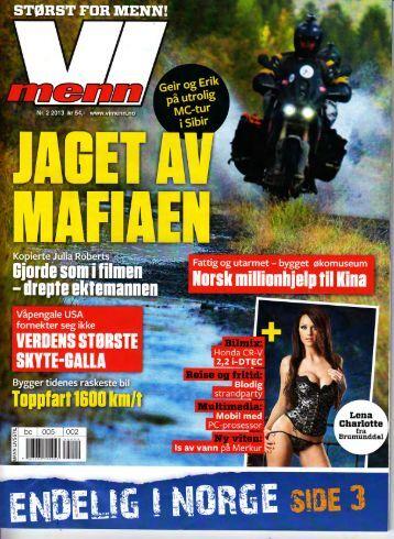 ViMenn nr2. 2013 - sterk