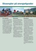 Pjecen om energiafgrøder og biogas - Djurs Bioenergi - Page 4