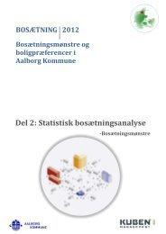Del 2: Statistisk bosætningsanalyse - Aalborg Kommune