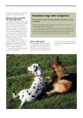 NEUTRALISERING - Dyrefondet - Page 4