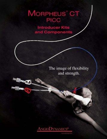 Download PDF 4
