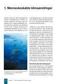 Klimaændringer og tropeøer - Danmarks Naturfredningsforening - Page 3