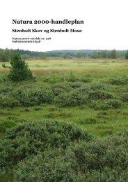 Endelig N2000handleplan-228Stenholt.pdf - Ikast-Brande Kommune