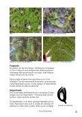 Jord og Plante Kompendium.pdf - Page 7
