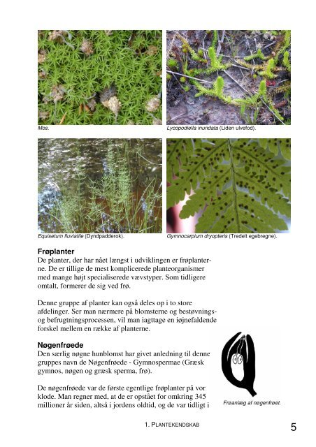 Jord og Plante Kompendium.pdf