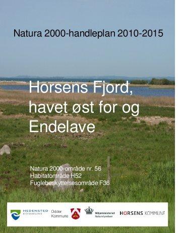 Forslag til Natura2000 handleplan for Horsens ... - Odder kommune