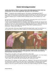 4. Glade Gotvedgymnaster - Krop og Dans