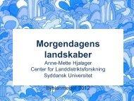 Professor, centerleder Anne Mette Hjalager, Center for ...