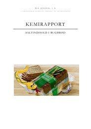 KEMIRAPPORT
