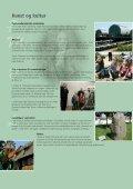 Bliv i Høje-Taastrup - Page 4