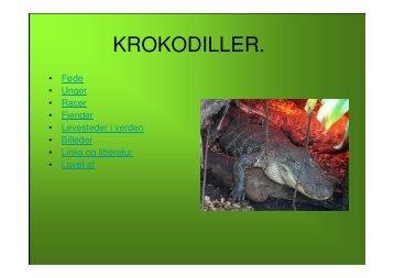 Microsoft PowerPoint - KROKODILLER