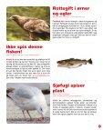 KROPPEN - Miljøagentene - Page 5