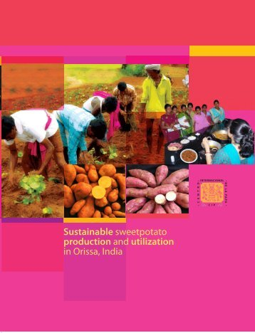 Sustainable Sweetpotato Production and Utilization in Orissa, India