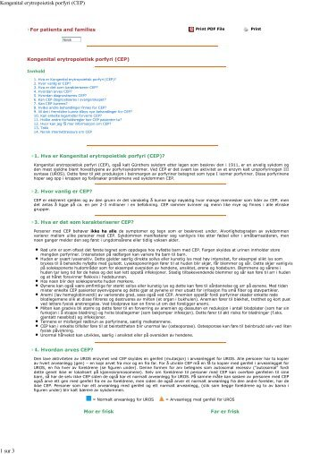 Print PDF File