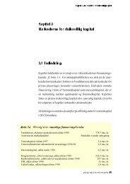 Kapitel 3 Markederne for risikovillig kapital