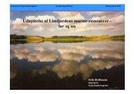 Udnyttelse af Limfjordens marine ressourcer - før og nu