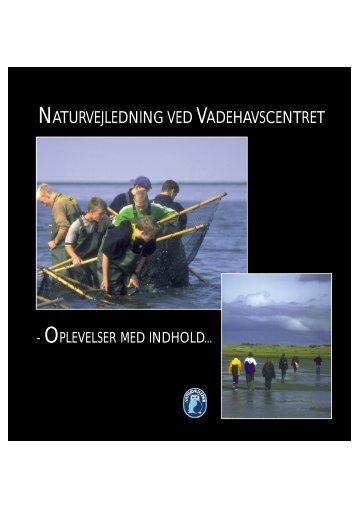 naturvejledning ved vadehavscentret - biohold-27-33 - home
