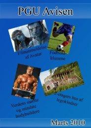PGU Avisen 2010 - Medielinien - PGU