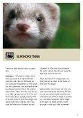 SÅDAN PASSER DU DIN FRITTE/ILDER - Dyrenes Beskyttelse - Page 5