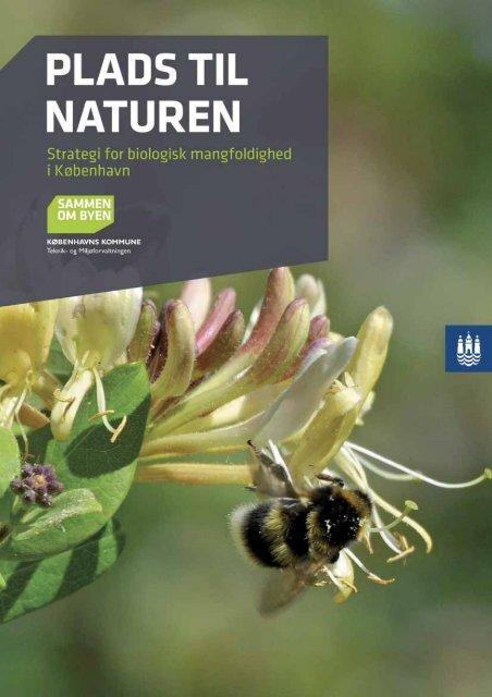 Plads til naturen - Klimatilpasning