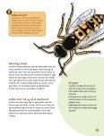 """Kanon Natur - insekter"" som pdf - Naturstyrelsen - Page 5"