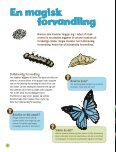 """Kanon Natur - insekter"" som pdf - Naturstyrelsen - Page 6"