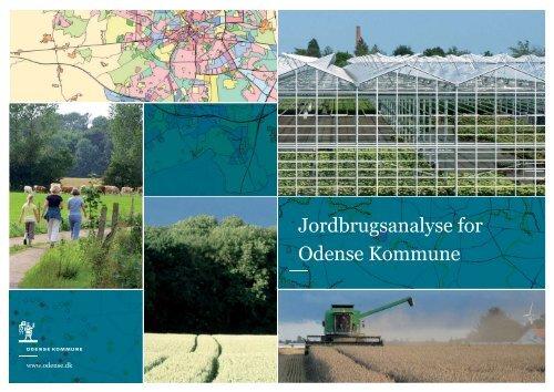 Jordbrugsanalyse for Odense Kommune - Naturstyrelsen