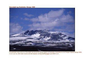 Dovrefjell og Snøhetta i Norge 1999 - Ingmar Madsen