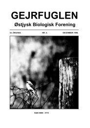 Atypus affinis - Gejrfuglen
