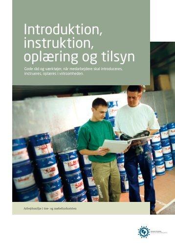 Introduktion, instruktion, oplæring og tilsyn - Industriens ...