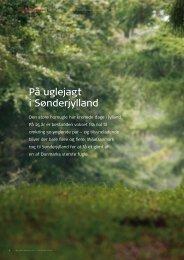 På uglejagt i Sønderjylland - Naturstyrelsen