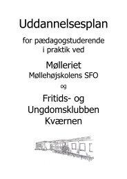 Uddannelsesplan for Studerende - Møllehøjskolen