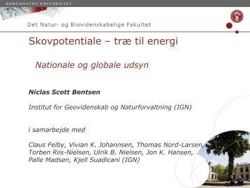 Skovpotentiale ?træ til energi