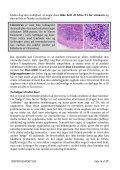 Ungesyge - Adenovirus - Dansk Brevduesport - Page 4