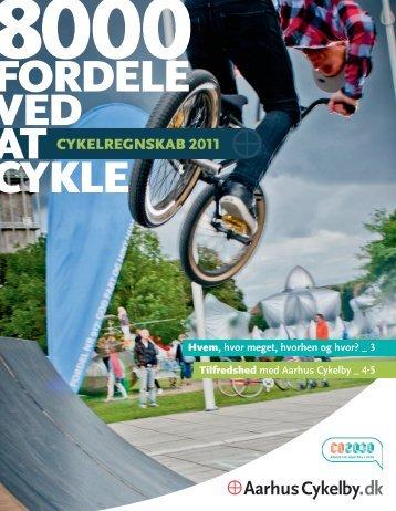Cykelregnskab 2011