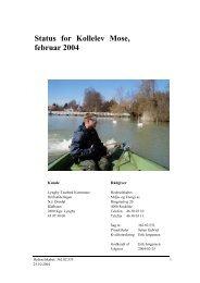 HEDESELSKABETS 2004-RAPPORT OM KOLLELEV MOSE