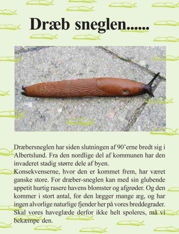 Dræb sneglen...... - Agenda Center Albertslund
