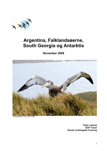 Argentina, Falklandsøerne, South Georgia og Antarktis - DOF Travel